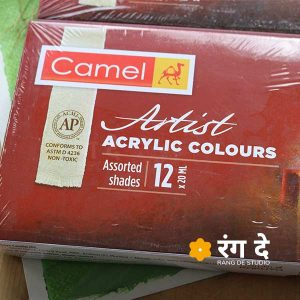 Buy Camlin Artists Acrylic Colours20ml Set Online from Reang De Studio