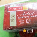 Buy Camlin Artists Acrylic Colours 9ml Set Online from Reang De Studio