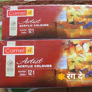 Buy Camlin Artists Acrylic Colours Set Online from Reang De Studio