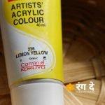 Buy Camlin Lemon Yellow Artist's Acrylic Colour Crimson Lake Online from Rang De Studio