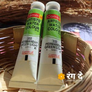 Buy Camlin Permanent Green light artist watercolour shade online from Rang De Studio