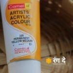 Buy Camlin Permanent Yellow Artists Acrylic Colours Online from Rang De Studio