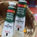 Buy Terre Verte artist watercolour shade online from Rang De Studio