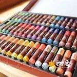 Buy camlin artist oil pastels online from Rang De Studio