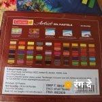 Shop Artist Oil Pastels by Camlin, buy onlin from Rang De Studio