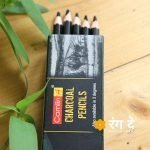 Buy Camlin Charcoal Pencils Online from Rang De Studio